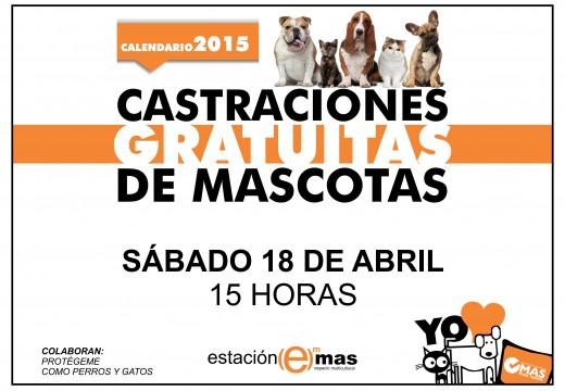 Castraciones de mascotas en abril de 2015.