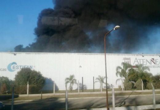 Cañada de Gómez. Incendio en el Area Industrial.