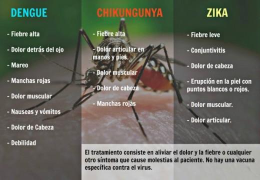 Charla informativa sobre Prevención del dengue, zika y chikungunya.