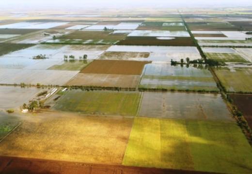 El Banco Nación brindará una charla informativa por la crisis agropecuaria.