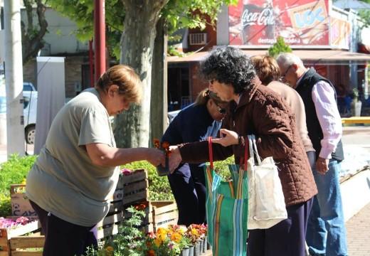 Cañada de Gómez: El Municipio llevó a cabo una nueva campaña 3 X 1