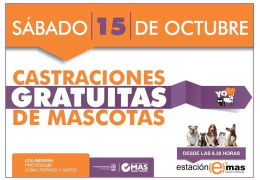 Sábado 15 de octubre, castraciones masivas.