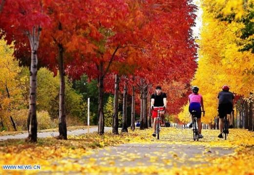 Un poquito más de otoño.