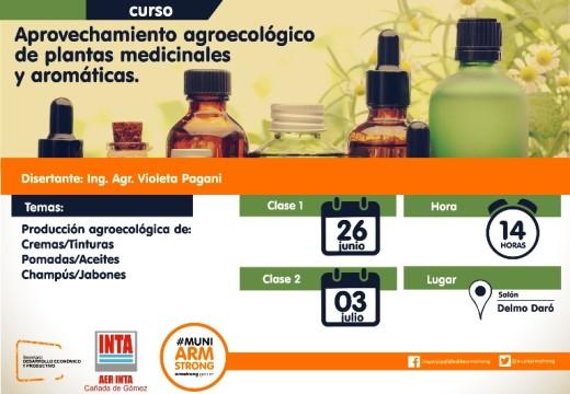 Aprovechamiento agroecológico de plantas medicinales y aromáticas.