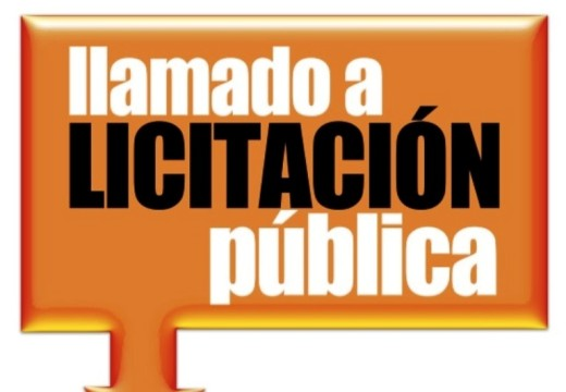 Llamado a Licitación Pública N° 09/2019