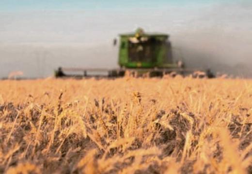 Estiman que la campaña agrícola sumará más de U$S 33 mil millones.