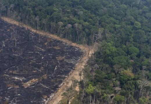 Bomberos Voluntarios de la región fueron convocados para combatir incendios en el Amazonas.